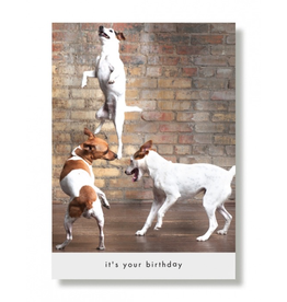 Greeting Cards Howie & Gang Birthday Card