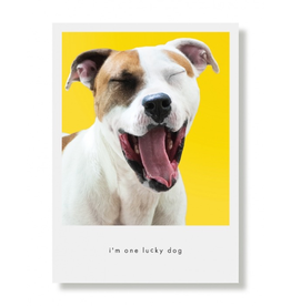 Greeting Cards Lucky Dog Greeting Card
