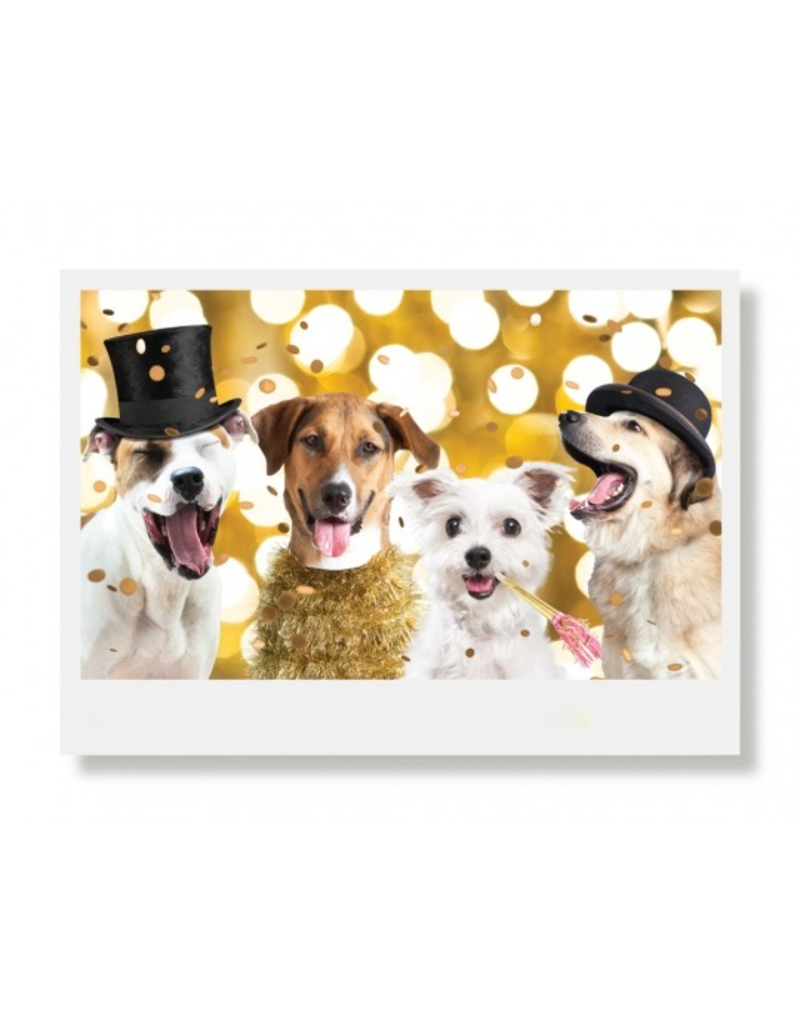 Greeting Cards Tucker & Gang Holiday Card