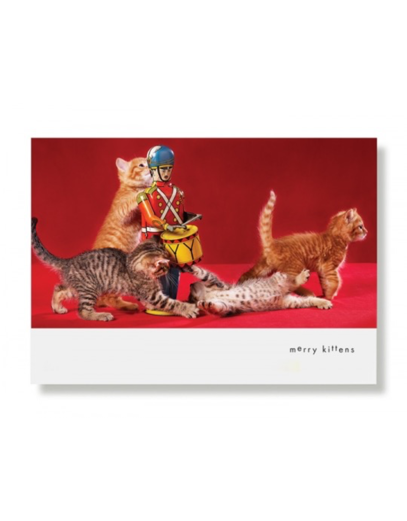 Greeting Cards Merry Kittens Holiday Card