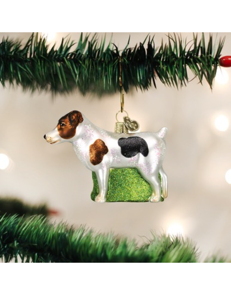 Ornaments Jack Russell Ornament