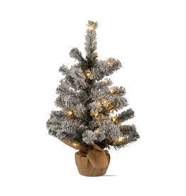 Accent LED Lit Snowy Evergreen Tree