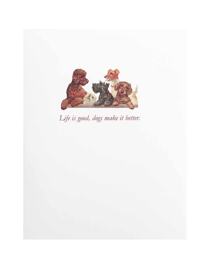 Greeting Cards - Birthday Dog Make It Better Greeting Card