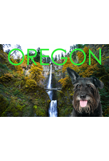 Postcards Gus Greetings From Oregon Postcard