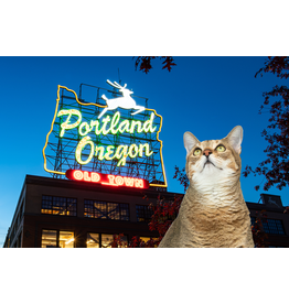 Postcards Giacomo Greetings From Portland Postcard