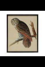 Wall Decor Repro Owl Print