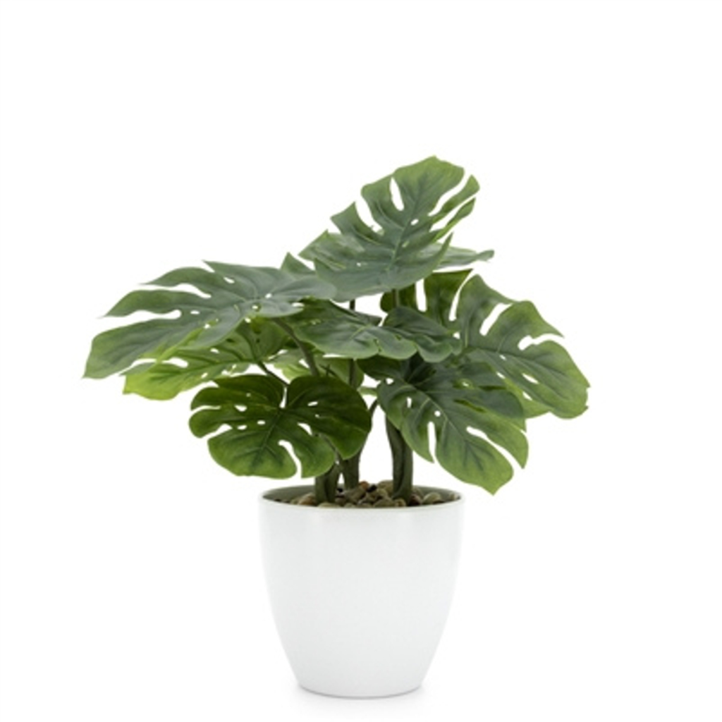 Torre Tagus VILLA FAUX POTTED MONSTERA