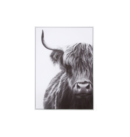 Style in Form HIGHLAND COW CANVAS PRINT