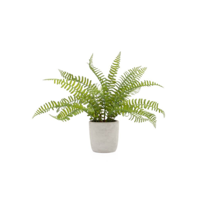 Torre Tagus POTTED FAUX BOSTON FERN
