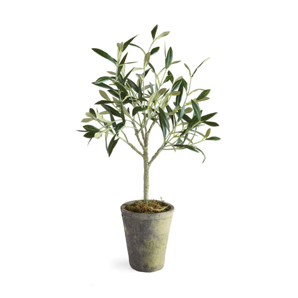"""Napa FAUX OLIVE TREE POTTED, 17"""""""