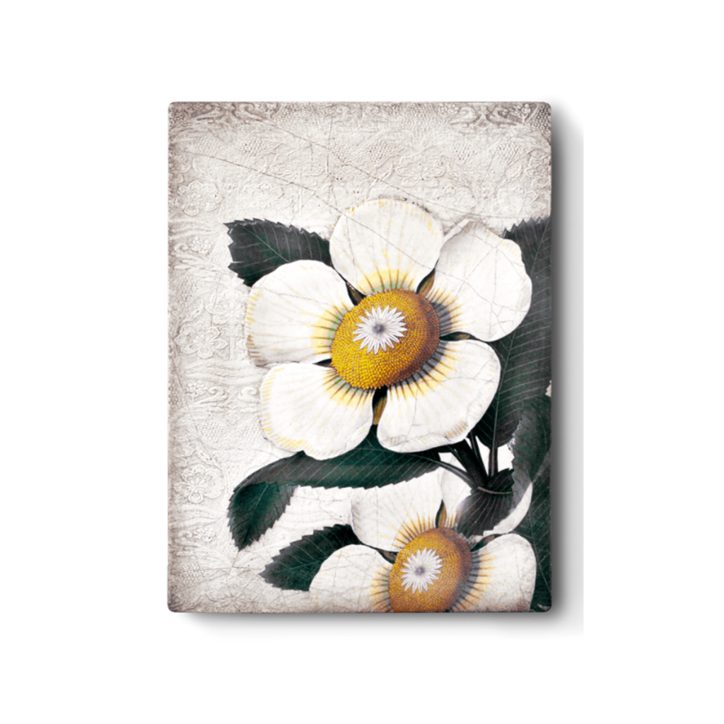 Sid Dickens SID DICKENS TILE, WHITE BLOSSOMS