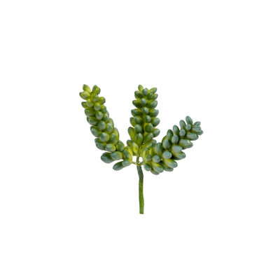 PEARL SUCCULENT GREEN PICK, SMALL