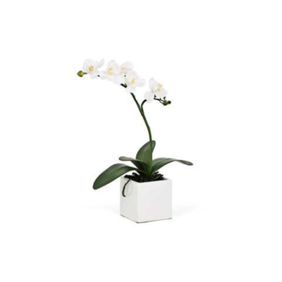 Torre Tagus MINI POTTED FAUX ORCHID