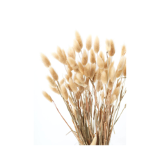 """You Floral DRIED BUNNY TAILS, NATURAL, 27"""""""