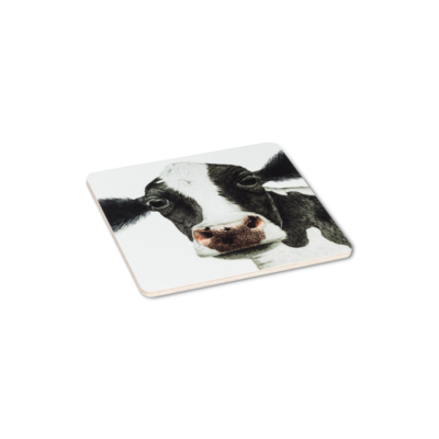 ROSA COW COASTERS, SET OF 4