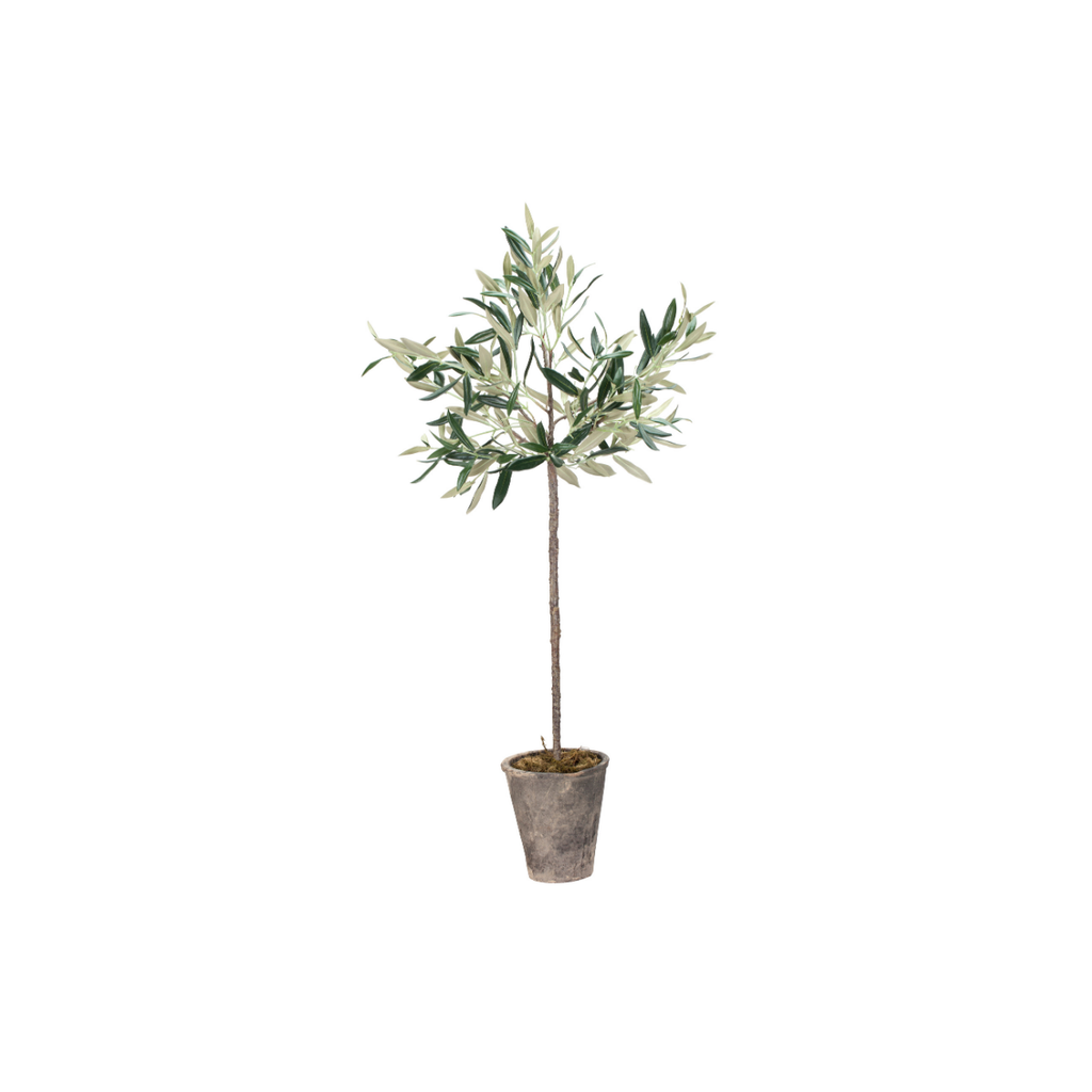 "Napa POTTED OLIVE TREE, 30"""