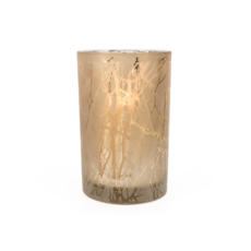 """Torre Tagus BRANCH SILHOUETTE ETCHED HURRICANE VASE, 4.5 x 7"""""""
