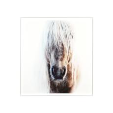 """PALOMINO FRAMED ART, 36 x 39"""""""