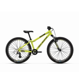 Rocky Mountain Bicycles Edge 24