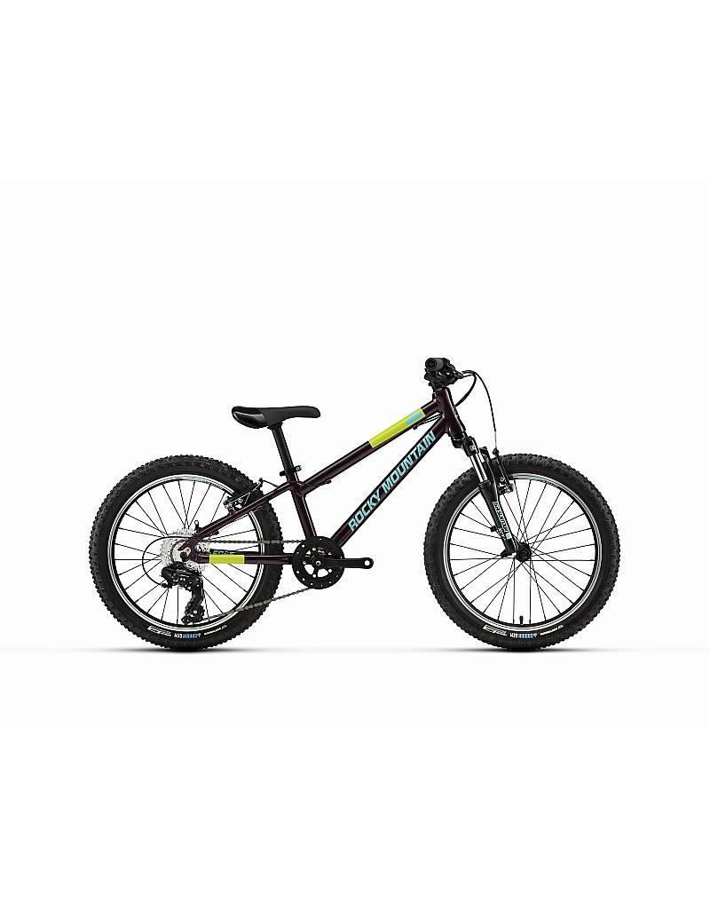 Rocky Mountain Bicycles Edge 20