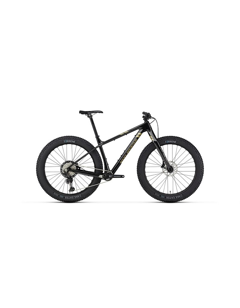 Rocky Mountain Bicycles Suzi Q C70