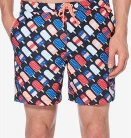 Penguin Penguin Popsicle Print Swim Trunks