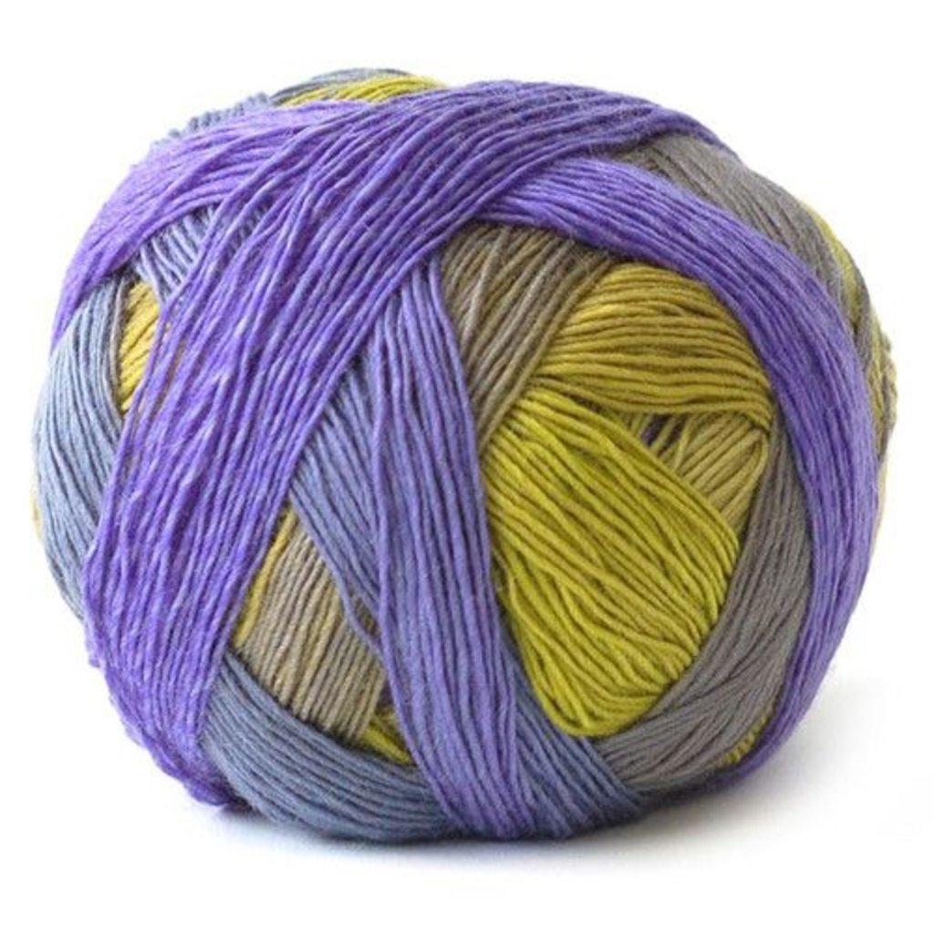 Schoppel Wolle Zauberball 100