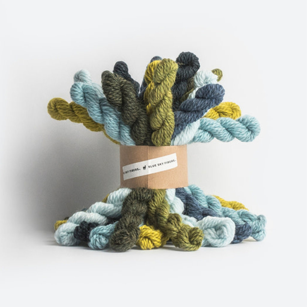Blue Sky Fibers Bundle Kit