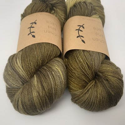 Lichen And Lace 80/20 Sock - Shrub