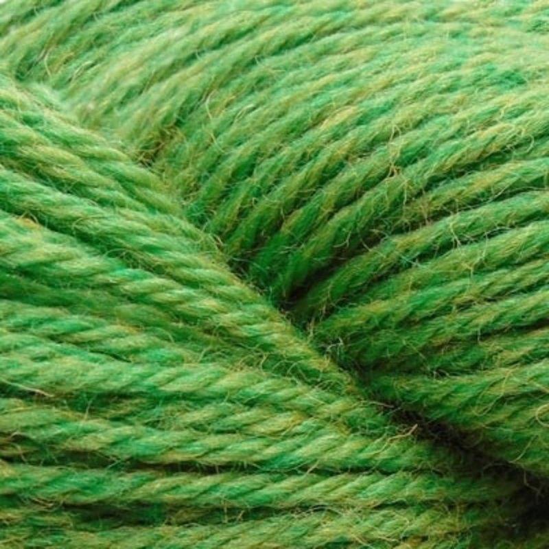 Cascade 220 Heathers - Fern (1035)