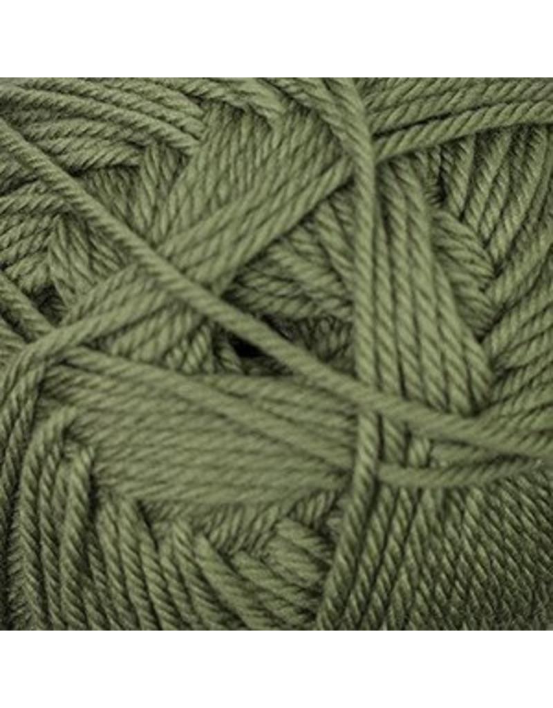 Cascade Cascade 220 Superwash Merino - Iguana (58)