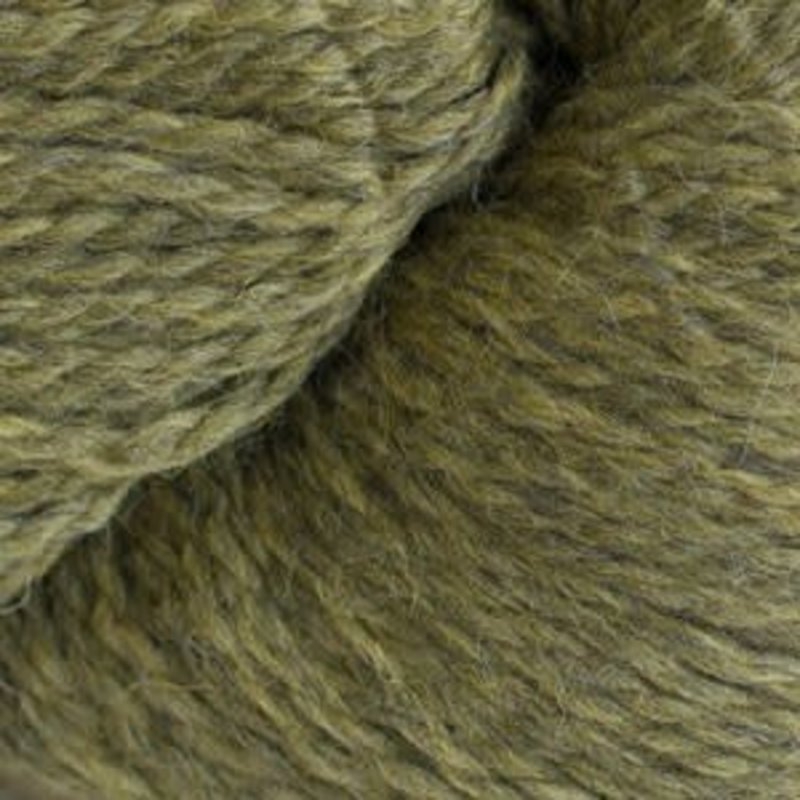 Cascade Cascade Eco Wool + Heathers - Turtle (2452)