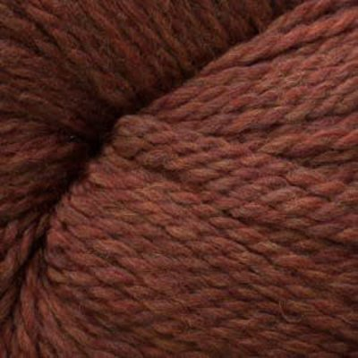 Cascade Cascade Eco Wool + Heathers - Pumpkin Spice (2453)