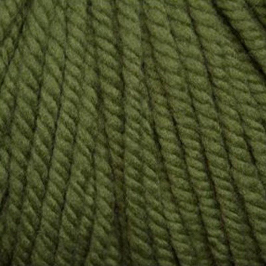 Cascade Cascade Yarns Boliviana Bulky - Tree Top (17)