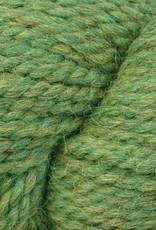 Berroco Berroco Ultra Alpaca Chunky - Irwyn Green Mix* (7273)