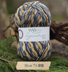 West Yorkshire Spinners West Yorkshire Spinners Cocktail Sock Yarn - Blue Lagoon