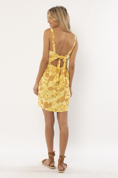 Amuse Society Amuse - Before Us Woven Dress