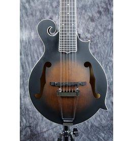 Gold Tone Gold Tone F12 Guitar Mandolin