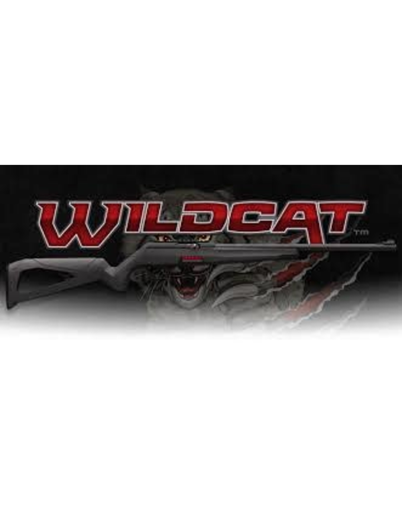 WINCHESTER REPEATING ARMS WINCHESTER WILDCAT .22 LR