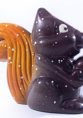 Ecureuil choco  Morel Chocolatier
