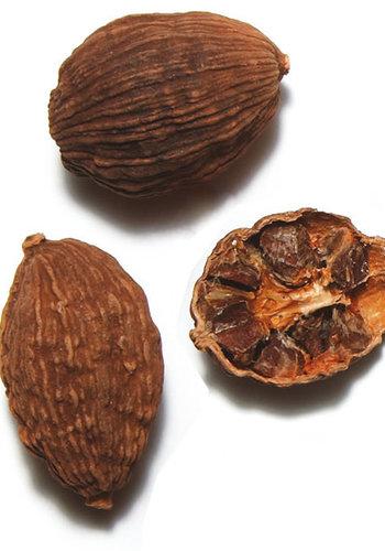 Cardamome noire chinoise - Épices de cru -  15g