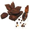 Épices de cru - Cardamome noire indienne - 35 g