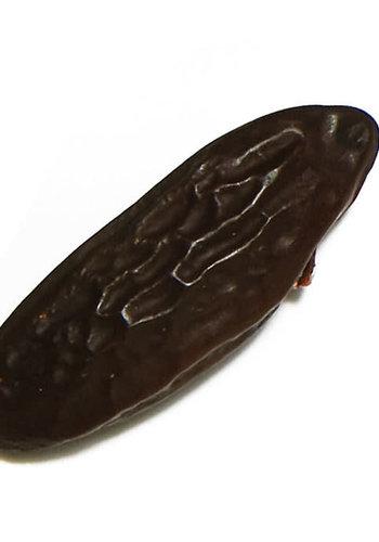 Épices de cru - Fève de Tonka - 5g