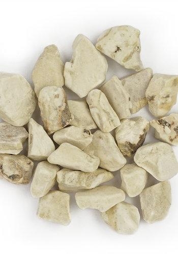 Racine d'Iris Maroc - Épices de Cru - 40g