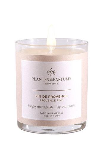 Bougie végétale parfumée  |pin de Provence |Plantes & Parfums Provence | 180g
