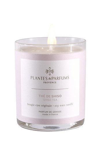Bougie végétale parfumée  | Thé de Shiso | Plantes & Parfums Provence | 180g