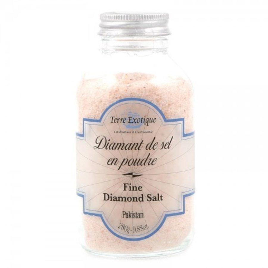 Diamant de sel en poudre (Terre Exotique)  280G