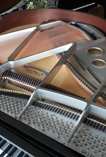 "Hallet Davis & Co. Hallet David and Co. HS148SP 4'10"" Contemporary Grand Piano  (High Polish Ebony Silver with Silver Hardware and Mahogony Inner Rim)"