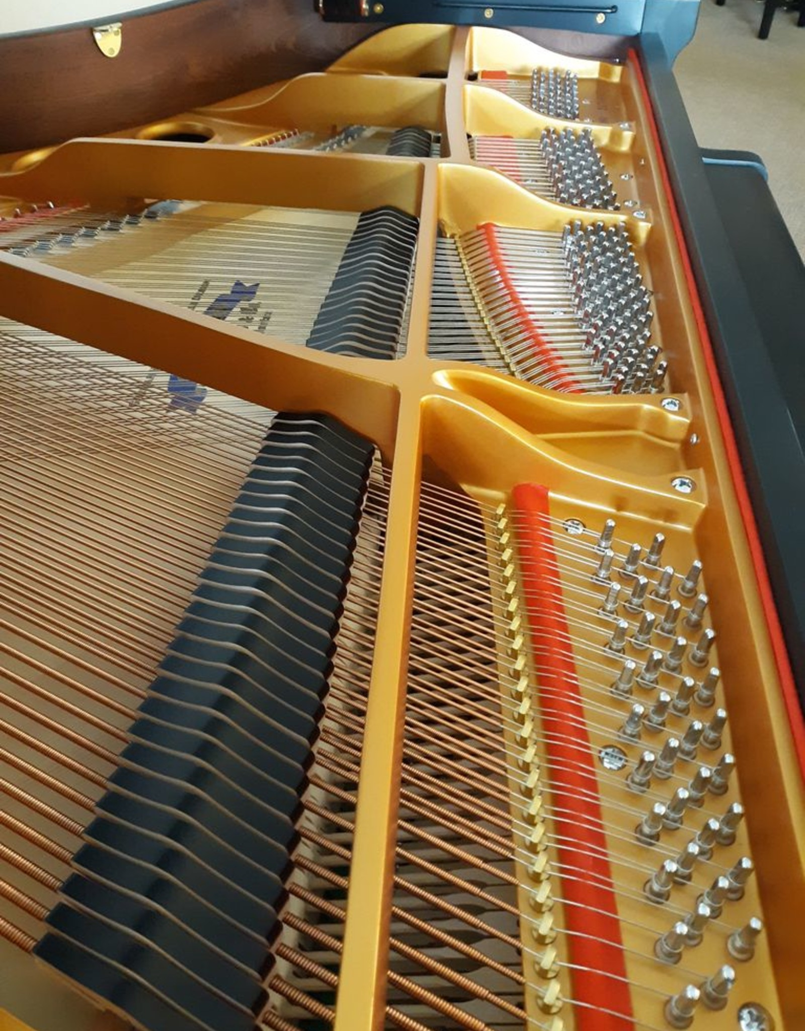 "Hallet Davis & Co. Hallet, Davis and Co. HS160 5'3"" Elite Grand Piano (Satin Ebony with Mahogony Inner Rim)"