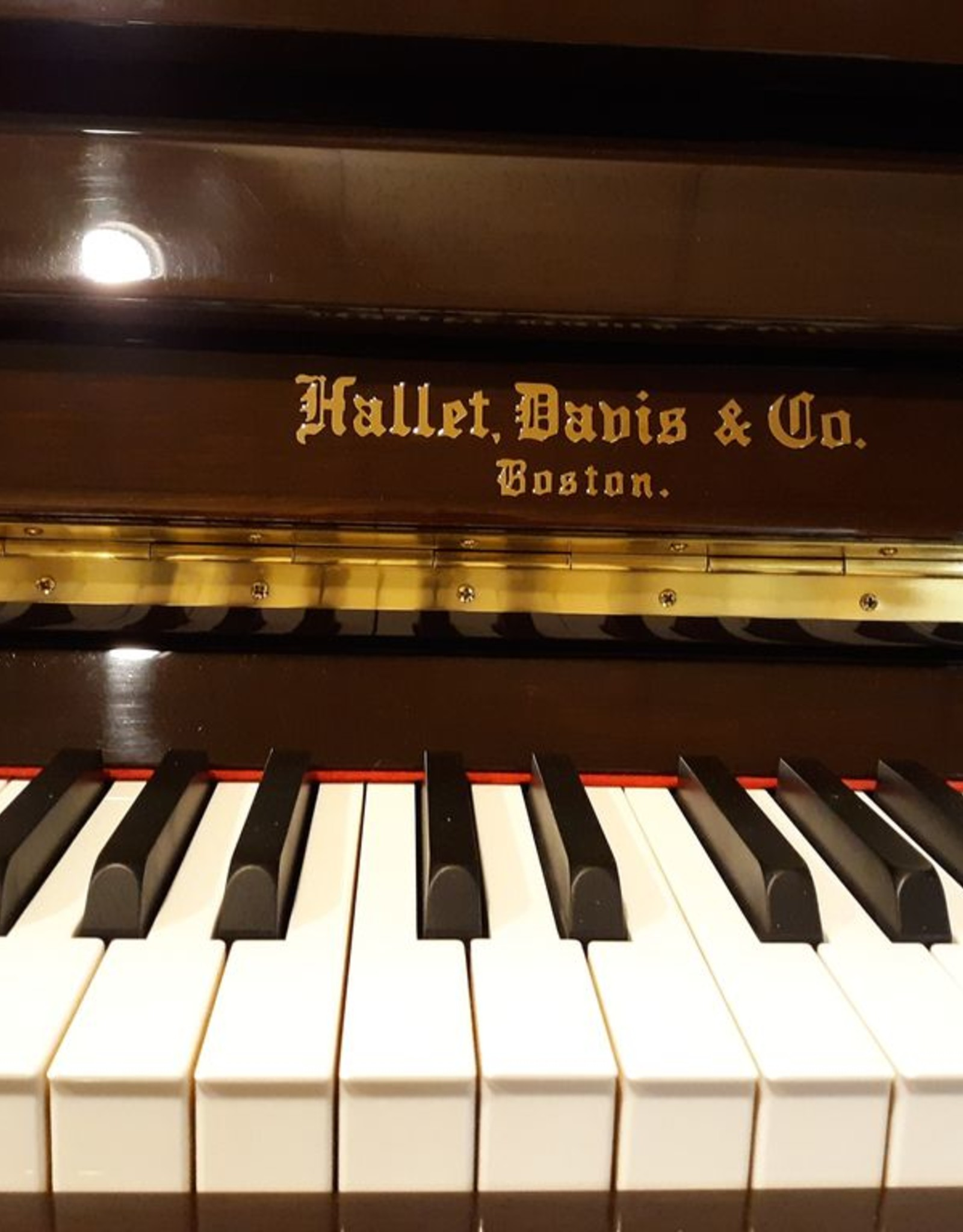 "Hallet Davis & Co. Hallet, Davis and Co. HS118M 46.5"" Traditional Upright Vertical Piano (High Polish Dark Walnut)"